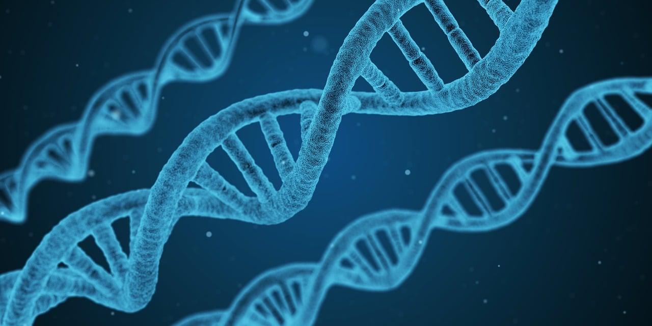 Biotechnologie Jobs